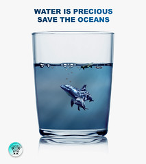 Protégeons les océans