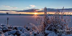 February 21, 2021 - A beautiful, but cold, sunrise. (Tony's Takes)