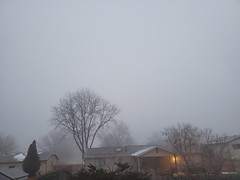 February 17, 2021 - Thick fog starts the day. (LE Worley)