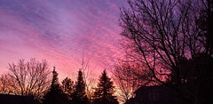 February 1, 2021 - A gorgeous sunrise to start the month. (David Canfield)