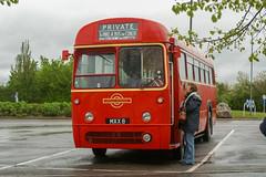 Photo of ex London Transport (LN) - MXX 8