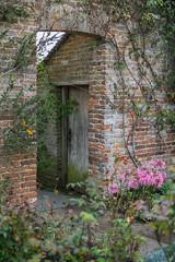 Photo of English Gardens