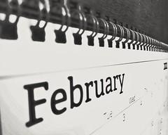 Day 54 - Calendar