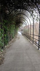 Photo of Five weirs walkway