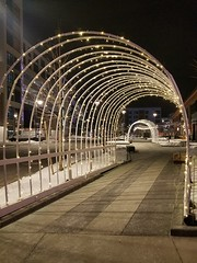 2-12-2021: Sparkly arch. Watertown, MA