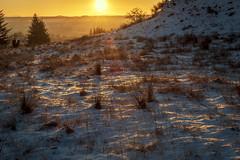 Photo of Sunrises, Bridgend Hill, Lochwinnoch, Renfrewshire, Scotland, UK