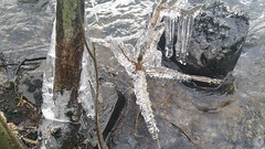 Photo of Icicles