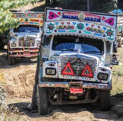 Colourful trucks