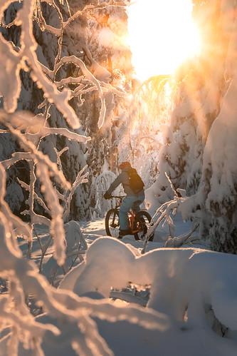 Talvipyöräilijä Puijolla