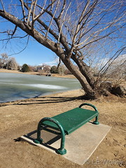 February 23, 2021 - A beautiful day in Thornton. (LE Worley)