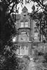 House, 349, Clapham Rd, Clapham, Lambeth, 1989 89-6b-25