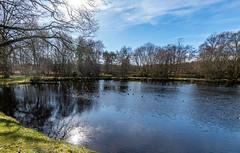 Photo of Small lake, Crabtree Lodge, Bramshill Forest Walk, 23 Feb 2021 (8)