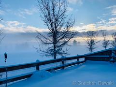 February 25, 2021 - Beautiful ground fog envelops the landscape. (Gretchen Dewald)