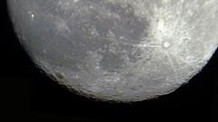 Day 56 - Moon Bottom