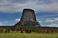 Devils Tower Rising Above a Forested Slope (Devils Tower National Monument)