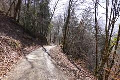 Route de Nantbellet @ Saint-Ferréol