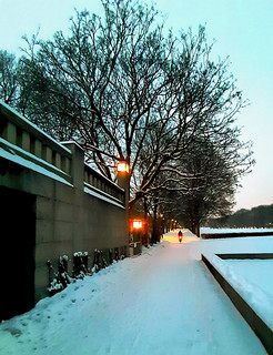 Winter cyclist. Vigeland Park. Oslo