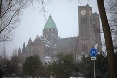 Kathedrale basiliek Sint-Bavo, Haarlem