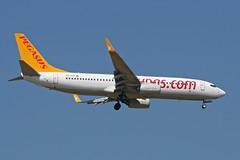 Photo of Boeing 737-82R 'TC-AIS' Pegasus
