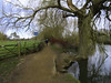 250221#44 Wallingford Thames Path
