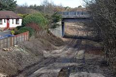 Photo of Cameron Bridge
