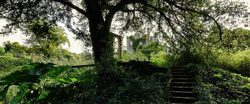 Birr Castle..