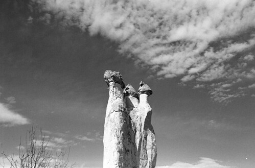 "Three Sisters  (Nikon FM3a / Tri-X) • <a style=""font-size:0.8em;"" href=""http://www.flickr.com/photos/65969414@N08/50989903437/"" target=""_blank"">View on Flickr</a>"