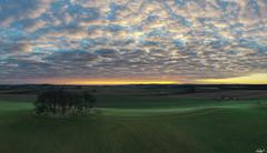 Photo of Sunrise at Pitkennedy Copse...