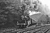 Wyvern Express 1981 B/W Version