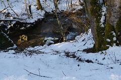 Ruisseau des Trois Fontaines @ Vieugy