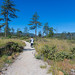 Rough and Ready Botanical Wayside