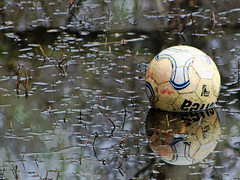 Photo of The Lost Ball