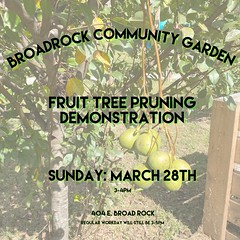 Before our trees start producing fruit we are blessed to have someone come show us how to prune our fruit children. 💚 Come join us Sunday. Regular workday will still be 3-5pm for anyone that is coming out to help. 💚🌱