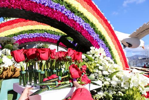 2017: Rose Parade