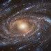 Hubble Beholds a Big, Beautiful Blue Galaxy