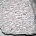 Graphic granite (Brunswick Pegmatite Field, Devonian-Permian; Fisher Quarry, north of Topsham, Maine, USA) 3