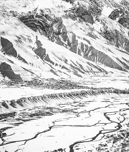 Greenland Dude Broglie's image