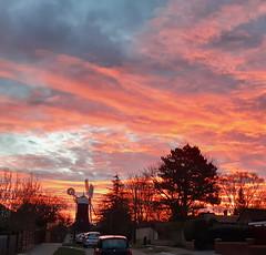 Holgate Windmill sunrise, February 2021 - 2