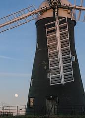Holgate Windmill, February 2021 - 08