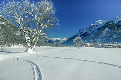 Tal bei Fieberbrunn Tirol IV