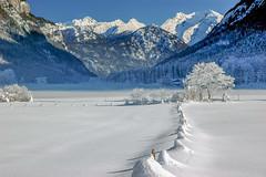 Tal bei Fieberbrunn Tirol im Winter I