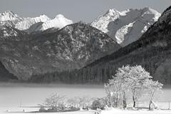 Tal bei Fieberbrunn Tirol VII