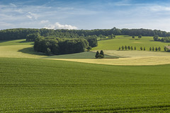 Weserbergland bei Reileifzen