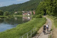 Weserradweg bei Bodenwerder