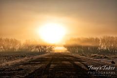 March 27, 2021 - Foggy sunrise road. (Tony's Takes)