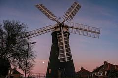 Holgate Windmill, February 2021 - 21