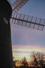 Holgate Windmill, February 2021 - 14