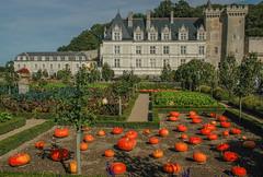 Schloss Villandry Loire I