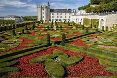 Schloss Villandry Loire V