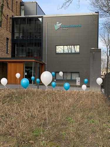 Heliumballonnen Hoornbeeck College Rotterdam